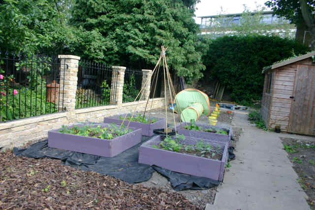The making of the vegetable patch